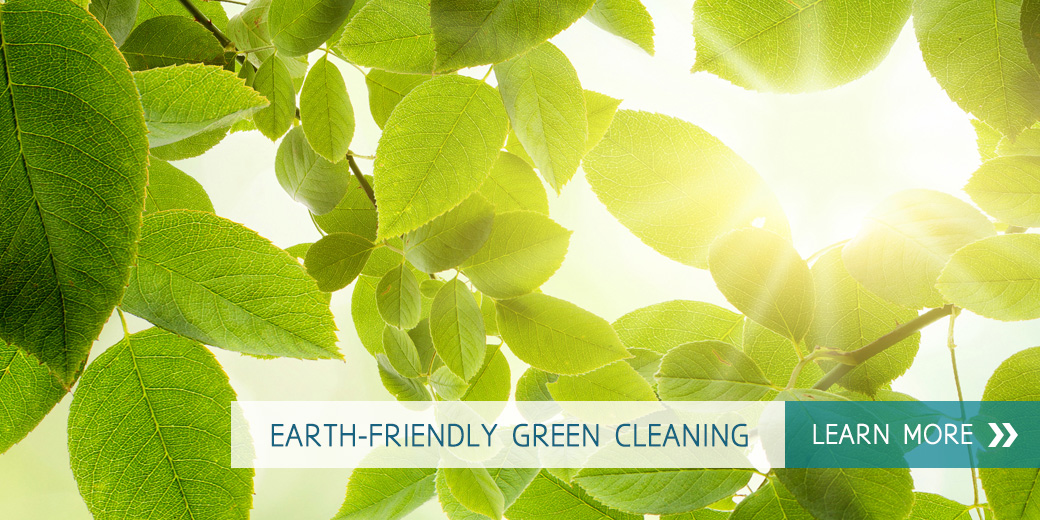 Green Cleaning products in Denver